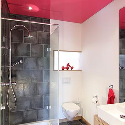 Spanndecke HG pink WC 001